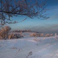 Январь :: Евгения Каравашкина