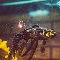 Подарок от рыбки :: Сергей Воробьев