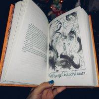 Книга :: Света Кондрашова