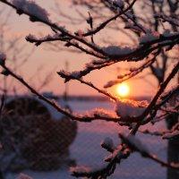 Зима. Восход солнца :: Алиме Исмаилова