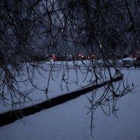 январьское утро :: Вера Шамраева