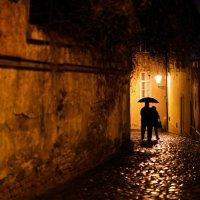 Дождь,  пара :: Татьяна [Sumtime]