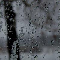 Взгляд через стекло... :: Алексей Бортновский