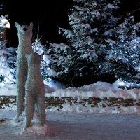 Зима :: Alex Bush