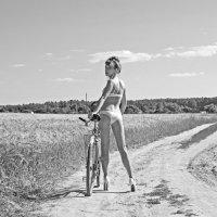 Путь домой :: Анастасия Задорожко