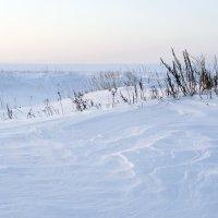 Северодвинск. У Белого моря. Узоры на снегу :: Владимир Шибинский