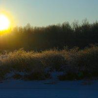Прикосновение солнца :: Светлана Ляшко