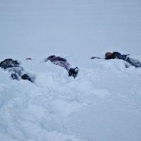 Затерянные в снегах :: Наталья Джикидзе (Берёзина)