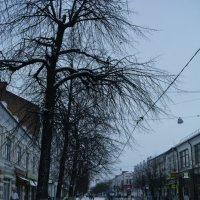 Морозный Ярославль :: Nastasia Nikitina