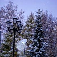 Фонарь.Деревья.Первый снег.2015 :: Артём Бояринцев