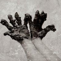 Руки :: annet Sagitova