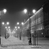 Питер.Туман. :: Людмила Волдыкова