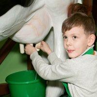 Наши в Кидбурге (детском городе мастеров). Ферма... :: Дарья Казбанова