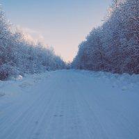Зима :: Юрий Кучевасов