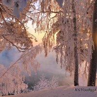 От зимы я еще не устала и рада... :: Галина