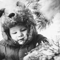 Медвежонок :: Мария Гусева