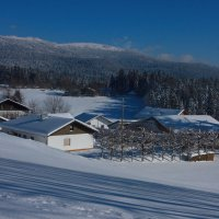 Картинка с лыжни :: Вальтер Дюк