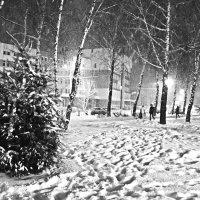 Зимушка-зима :: Сергей F