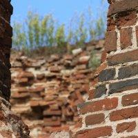 Крепкие  старые  стены -  и новая жизнь.... :: Валерия  Полещикова