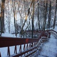 Лестница из Дьяковского сада в Голосовой овраг :: Елена Павлова (Смолова)