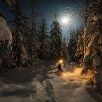 Один в темноте :: Виталий Истомин