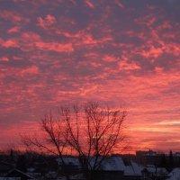 Рассвет встает над городом... :: Александр Подгорный