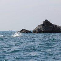 Вулконические  островки. :: Андрей