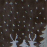 Рисунки на окнах :: Наталья Джикидзе (Берёзина)