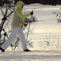 Лыжница :: Андрей Сотников