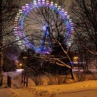 """ В зимнем парке так бело, так бело..."" :: Larisa Ereshchenko"