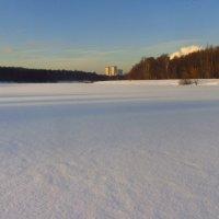 Здесь не ступала нога человека :: Андрей Лукьянов