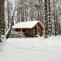 Зимовье :: Милешкин Владимир Алексеевич