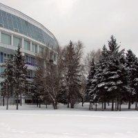 Мой город зимой :: раиса Орловская