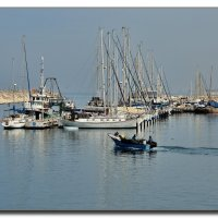 Ашкелонские рыбаки. :: Leonid Korenfeld