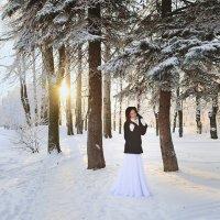 Зимняя фотопрогулка :: Oksanka Kraft