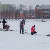 Зимняя рыбалка :: Игорь Вишняков