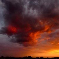 «Sunset/Закат» :: Svetlana Baglai