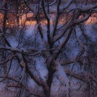 зима :: Юлия Денискина