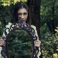 Сказочный лес :: Ольга Небельская