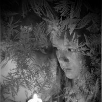 Зимний вечер :: Андрей Михайлин