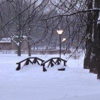 вечереет в парке :: Валентина. .