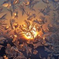 мороз и солнце :: Седа Ковтун
