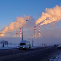 Морозное утро. :: Vladimir Kraft