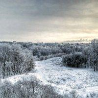 Морозным утром :: Милешкин Владимир Алексеевич
