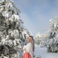 Рождественский лес :: Наталья Лебедева