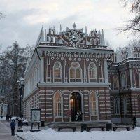 Средний дворец (Оперный Дом) и Фигурные ворота :: Елена Смолова