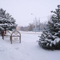 Ели в снегу :: Сергей Махонин