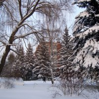 настоящая зима пришла... :: Галина Филоросс
