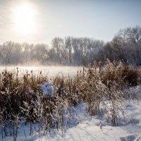 Зимний пейзаж. :: nataliya korchma