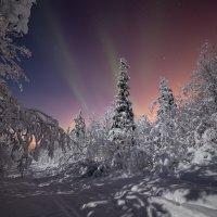 Морозная теплота :: Игорь Матвеев